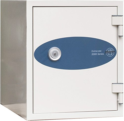 Lock Phoenix Safe - Phoenix Datacare 1-Hour Key Lock Fireproof Media Safe - 0.26 cu ft