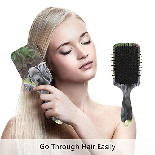 Detangling-Hairbrush, Great Dane Cute Dog Boar bristle Hair Brushes with Nylon Ball-tipped & Air Cushion Plastic Comb for Anti Static & Frizz,Womens/Girls Hair Brush