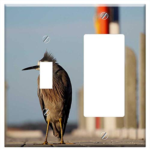 1-Toggle 1-Rocker/GFCI Combination Wall Plate Cover - Bird Heron Blue Grey Gray White Jetty Pier (Plates Bird Pier One)