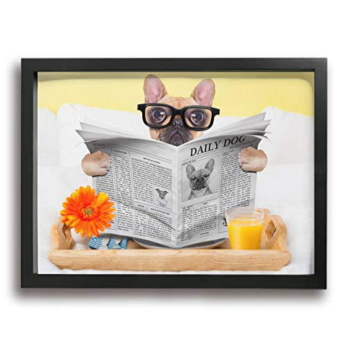 (Ale-art French Bulldog Reading Newspaper Funny Glasses Frame Bathroom Wall Art -Modern Canvas Painting Wall Art Pictures for Home Decoration Print On Canvas Giclee Artwork Wall Decor)