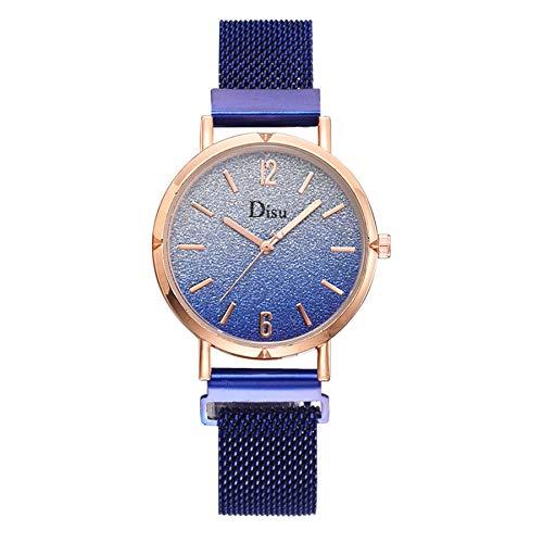 Fashion Simple Ladies Watch Color Cool Frosted Dial Wrist Watch Ladie Quartz Mesh Belt Watch (Blue)