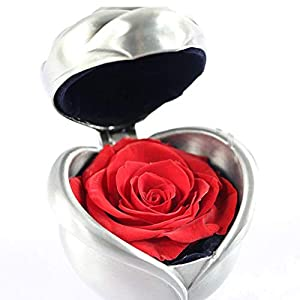 Handmade Preserved Fresh Flower Rose, Upscale Immortal Flowers, Gifts for Women, Her, Sister, Girls, Aunt, Mother's Day,Valentine's Day, Anniversary, Birthday, Wedding 91