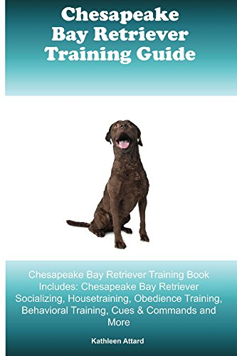 Chesapeake Bay Retriever Training Guide Chesapeake Bay Retriever Training Book Includes: Socializing, Housetraining, Obedience Training, Behavioral Training, Cues & Commands and More