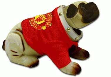 Manchester United Pet Jersey
