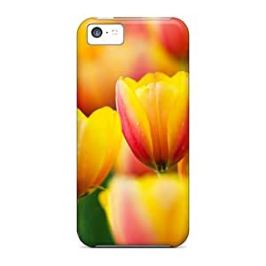 New Fashion Case Cover For Iphone 5c(rTZmf246MigBf)