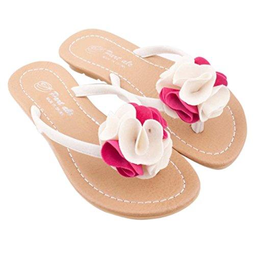 Goodsatar Mujeres Bohemia Zapatos Zapatos Plana Flor Ocio Señora Sandalias Zapatos De Playa Al Aire Libre Rosa caliente