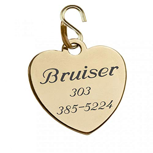 Engraved Shiny Gold Finish Pet Tag ID Charm Pendant for Dogs & Cats Collars Personalized Free (Engrave Name & Number) from aandlengraving