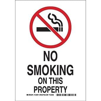 Amazon.com: Brady 123941 - Lote de 20 carteles para fumar ...