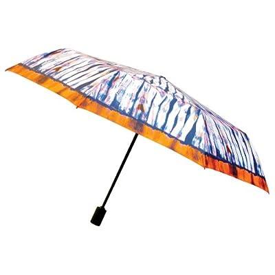 Nicole Miller 43 Inch Auto Open -Close Supermini Umbrella, On Clouds Print, One Size