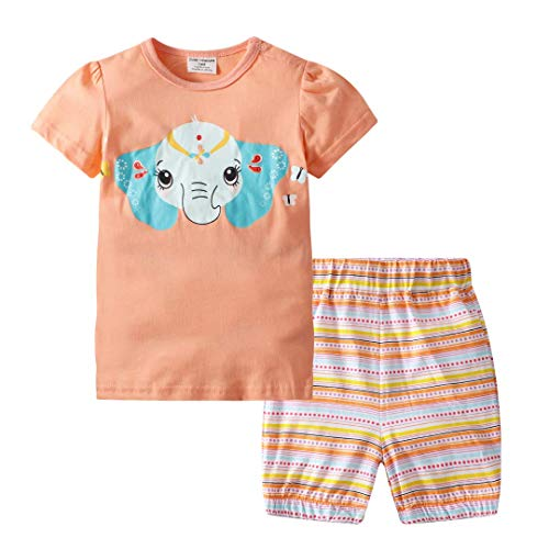 BIBNice Toddler Girls Cotton Clothing Sets Short Sleeve Pjs 6t -