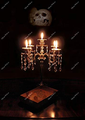 Gothic Skull Candlelight Crystal & Silver Candelabra Book Skullabra Candle Flames Spooky Autumn Fall Original Fine Art Photography Wall Art Photo -