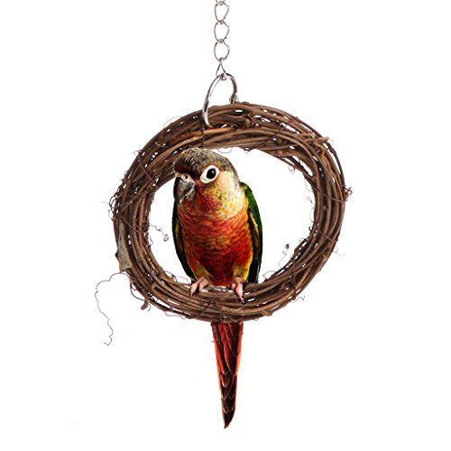 Parrot stand ,NNDA CO 1 Pc Bird Chew Bites Rattan Hoop Ring Toys Cage Climb Swing Pet Parrot Cockatoo Parakeet (18.50