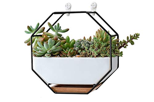"VanEnjoy 7"" White Ceramic Wall Planters Vase and Copper,Drainage Hole with Bamboo Tray - Succulent Pot Air Plants Mini Cactus Artificial Flowers Hanging Geometric Hexagon Wall Decor (Black Metal)"