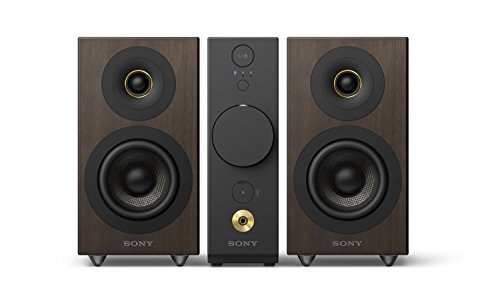 Sony High-Resolution Audio System with Headphone Amp CAS-1 (Sony Amp And Subwoofer)