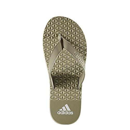 adidas Herren Eezay Soft Zehentrenner mehrfarbig ((Tech Beige F13/Tech Beige F13/Ftwr White)