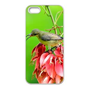 Iphone 5,5S Bird Phone Back Case Use Your Own Photo Art Print Design Hard Shell Protection LK038470