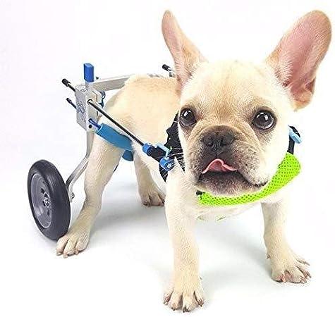 Silla de Ruedas para Perros Gato con silla de ruedas perro de la ...