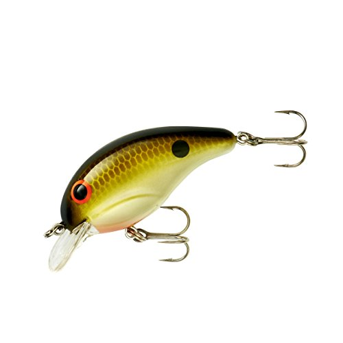 Bandit Crank 100-Series 2-Inch Tennessee Shad 2 to 5-Feet Deep Bait (Brown)