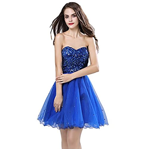 Royal Blue Dress with Sequin: Amazon.com