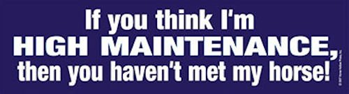 then you haven/'t met my horse Bumper Sticker If you think I/'m high maintenance