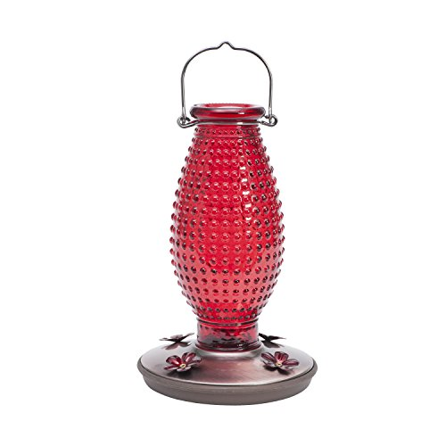 Perky-Pet Red Hobnail Vintage Glass Hummingbird Feeder - Pet Hummingbird Perky