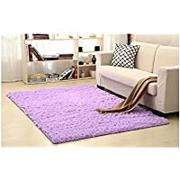 ELEOPTION Living Room Rugs Floor Mat Fluffy Shaggy Area Rugs for Home Deco Dining Room Bedroom Children Rome Anti-Skid Carpet Super Soft (60cmx90cm(23.6 x35.4 inch), Purple)