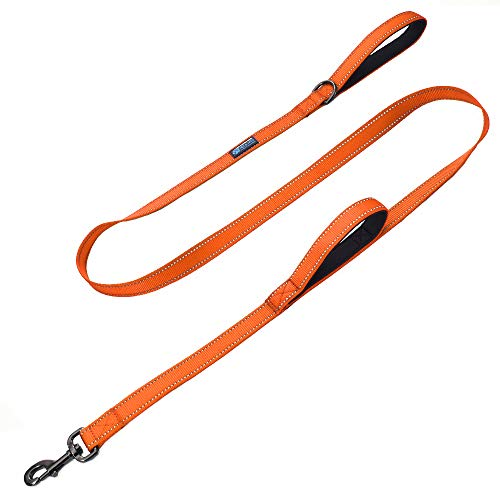 Max and Neo Double Handle Traffic Dog Leash Reflective - We Donate a Leash to a Dog Rescue for Every Leash Sold (Orange, 6 FT) ()