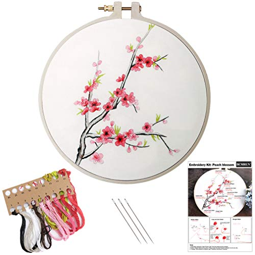 Embroidery Kit, Creative Flower Hand Embroidery Cross Stitch Starter Needlepoint Crafts Kit with Color Pattern Cloth, Embroidery Hoop, Color Threads and Tools Kit for Home Decor (Peach)
