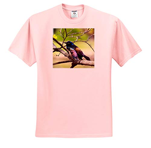 Stamp City - Birds - Photograph of a Colorful Common Grackle Sitting Among The Branches. - T-Shirts - Toddler Light-Pink-T-Shirt (4T) (ts_291284_49)