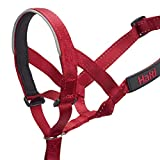 The Company of Animals HALTI Headcollar Size 2 Red