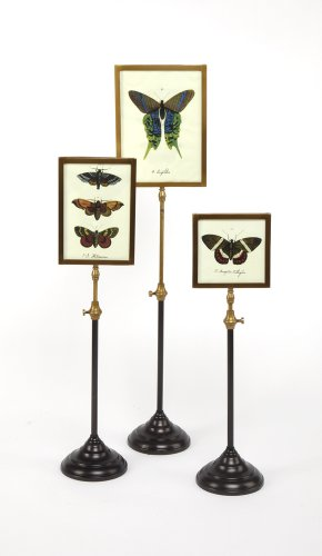Two's Company Telescopic Vision Double Sided Photo Frames with Butterfly Insert on Telescoping Pole, Set of 3 by Two's Company
