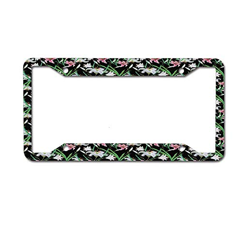 ABLnewitemFrameFF Exotic Nature Graceful Spring Time Garden with Lily and Iris Blossoms Foliage License Plate Personalized Women Men Auto Tag Sign is Made of Aluminum 4 Holes.