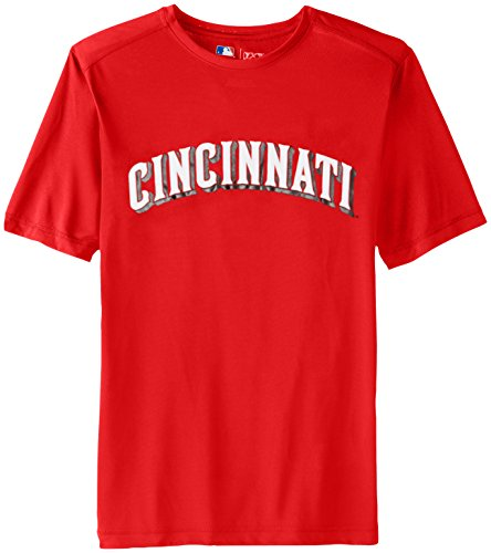 VF LSG MLB Cincinnati Reds Men's Synth Mass Workmark Tee, Red, Large