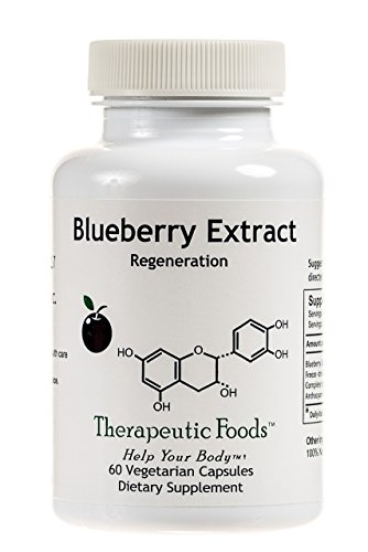 BioImmersion - Blueberry Extract - Nerve regeneration for brain health - 60 capsules by BioImmersion