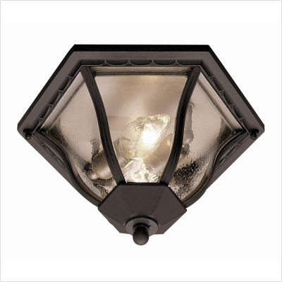 Trans Globe Lighting 4559 SWI Outdoor Bostwick 8.5