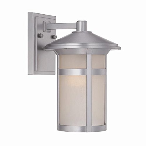 Acclaim 39102BS Phoenix Collection 1-Light Wall Mount Outdoor Light Fixture, Brushed Silver