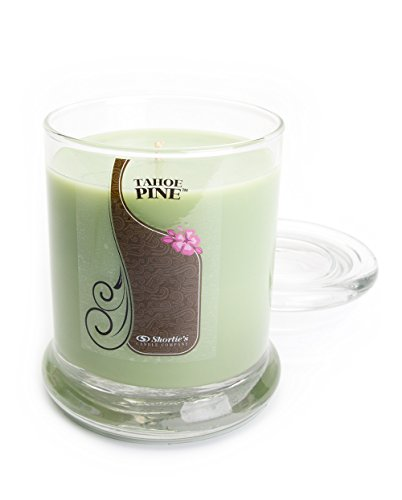 10 Oz. Highly Scented Green Jar Candle - Clean Candles Collection ()