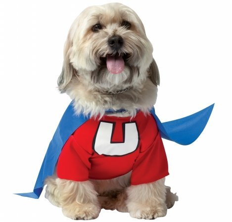 Underdog Pet Costume Set - (Underdog Cape)