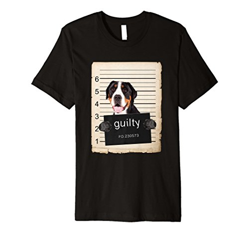 Greater Swiss Mountain Dog mug shot ()