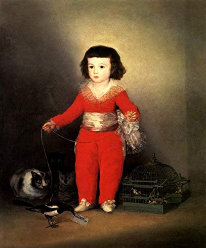 WONDERFULITEMS Don Manuel OSORIO MANRIQUE DE Zuniga Portrait BOY with Cats and Birds Spanish Painting by Goya 20