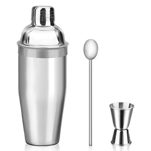 Mngarista 24 oz Cocktail Shaker Set - Drink Shaker - Bartender Kit - Stainless Steel Martini Shaker with Double Jigger and Stainless Steel Straw (Best Cheap Mixed Drinks)