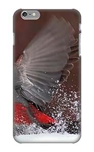 Exultantor Series Skin Case Cover Ikey Case For Iphone 6 Plus(animal Bird)