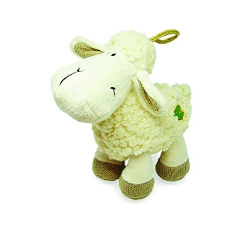 Irish Lamb - 9