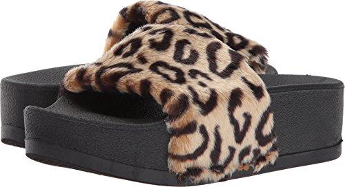 Steve Madden Women's Softey-P Slide Sandal, Multi, 8 M US