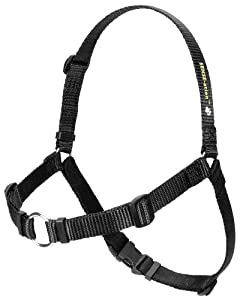 SENSE-ation No-Pull Dog Harness - Black Medium/Large (Narrow)