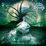 The Beauty Of Chaos by Eternal Deformity (2012-05-14)