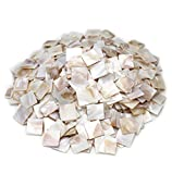 Tueascallk 1.2 Lbs / 300 Pcs of Natural Mother of Pearl Mosaic Tiles, for Home Decoration and Handmade Crafts, 0.8'(L) x 0.8'(W) x 0.065'(T)