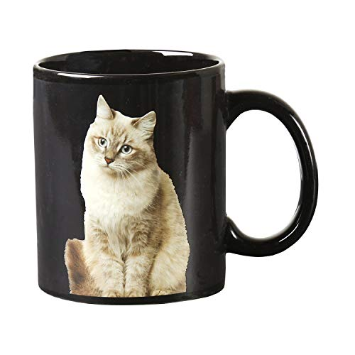 Classics Imports Heat Change Cat Mug - One Cat Leads to Another - Changing Picture Appears with Hot Liquid