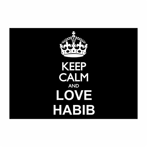teeburon-keep-calm-and-love-habib-pack-of-4-stickers