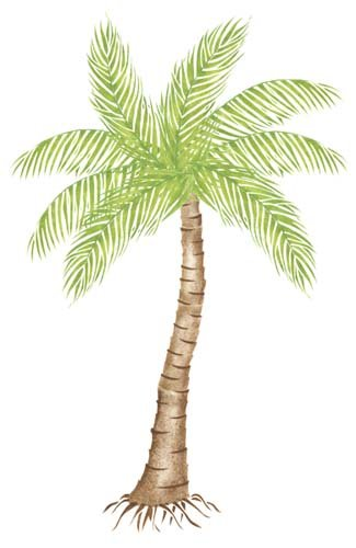 Stencil Palm Trees (Designer Stencils Large Palm Tree Wall Stencil SKU #1740 by)